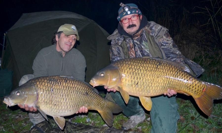 Pesca alla carpa nel grande fiume po pesca fishing shop for Prix carpe vivante