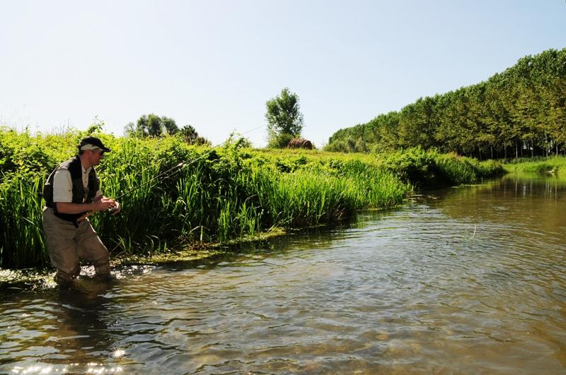 Pescare cavedani fondovalle pesca al cavedano a spinning