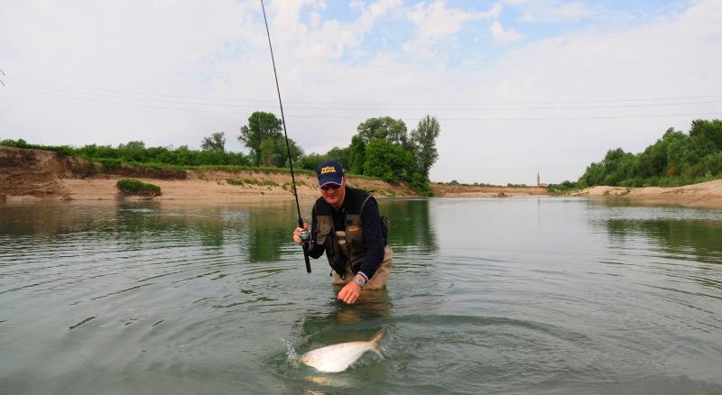 Pescare le cheppie