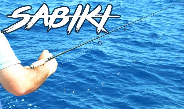 Sabiki e pesca in mare a bolentino