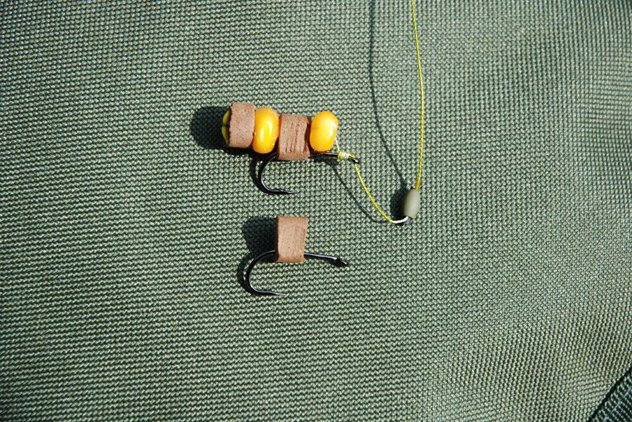 amur pescare la carpa erbivora