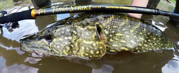 pescare-luccio-laghi-profondi-scelta-canna